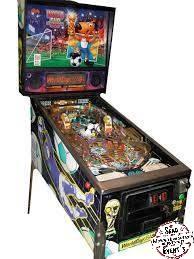 flipper world cup 94 jeu arcade location animation landes événement event mont de marsan enfants adultes
